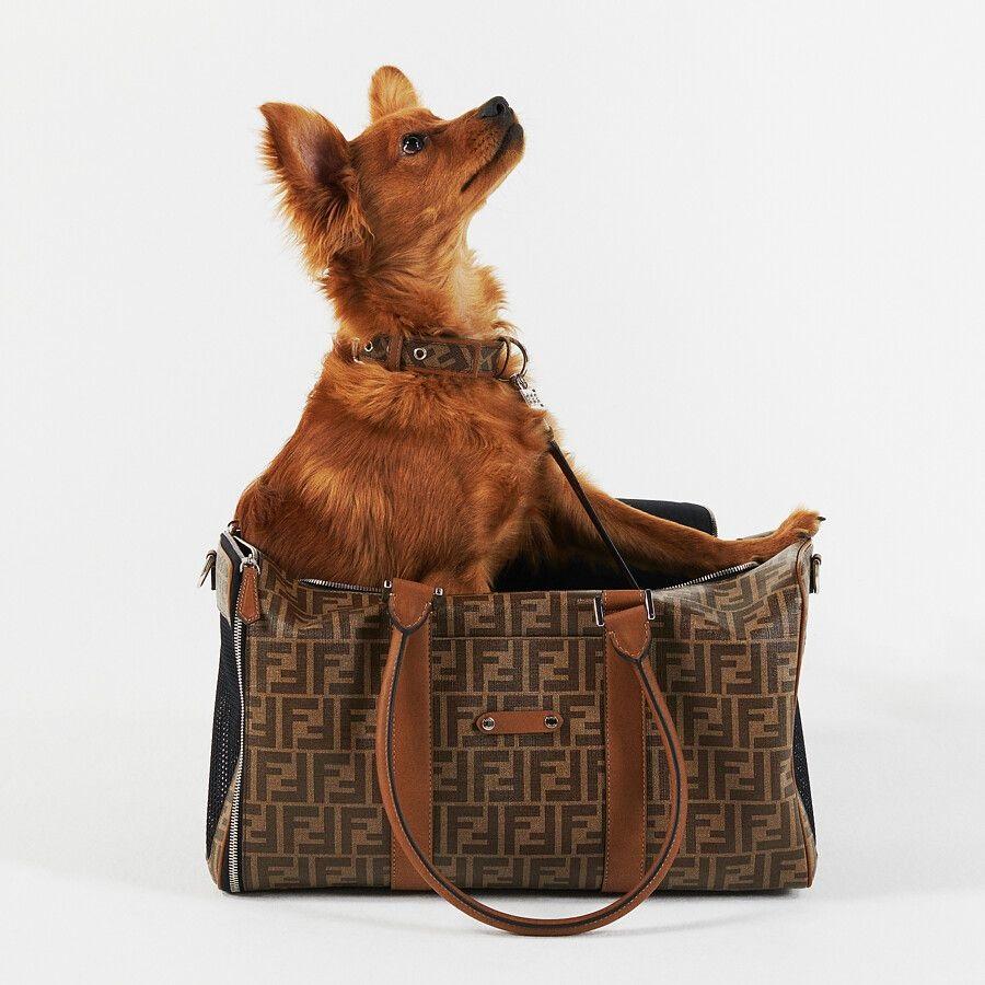 【寵物禮物】FENDI 推出寵物用品系列   為毛孩添置時尚外套、頸圈、狗繩、手提袋 FENDI 寵物用品系列:寵物旅行袋