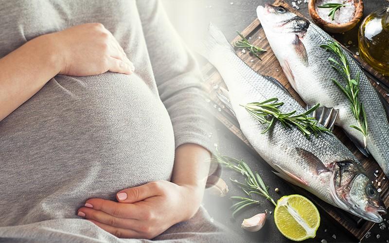 【專家教路】孕婦食魚要識揀 免中水銀毒