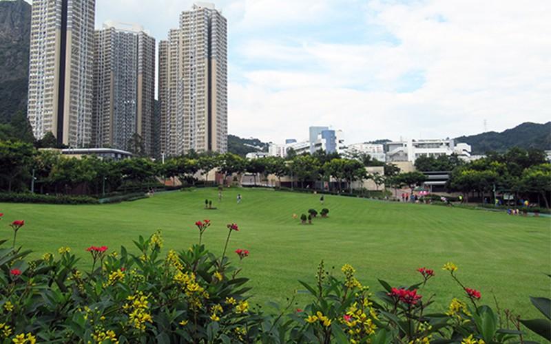 親子野餐必選!4個港九新界最佳野餐草地