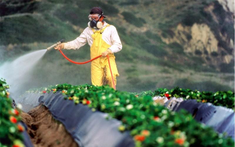 士多啤梨易殘留農藥 教你如何清洗水果