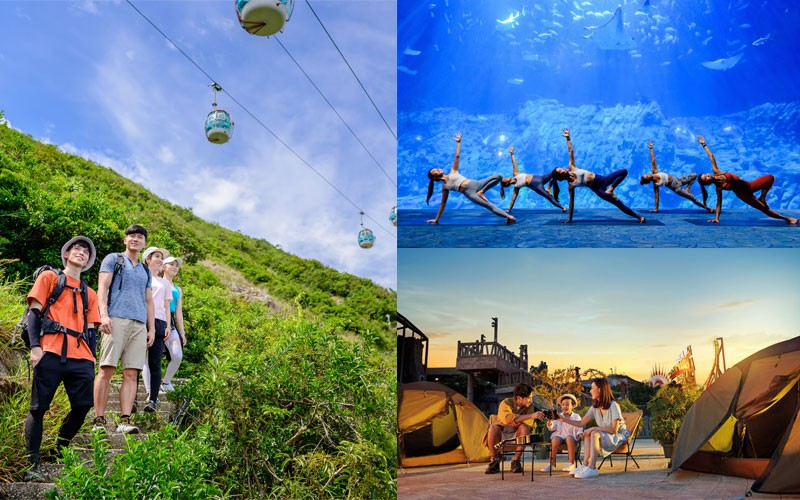 【主題公園期間限定活動】 海洋公園森度遊 & 香港迪士尼15周年辦網上生日會