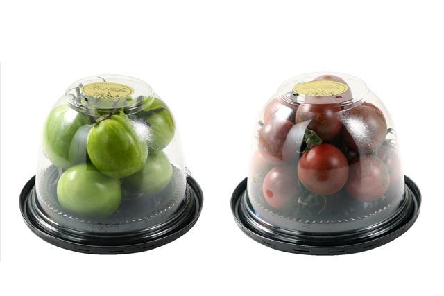 日本番茄品種全面睇
