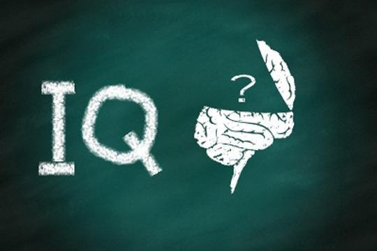 IQ高,又如何?