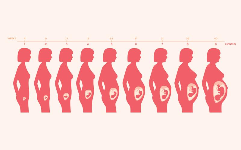 【懶人包】孕婦懷孕期「必須」補充的6種營養及時間表