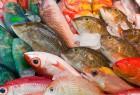 【坐月Q&A】坐月期間,有甚麼魚不能吃?