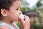 研究:每日吃雞蛋有助孩子成長