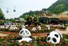香港熊貓列陣!同場加映國際大師熊貓藝術品