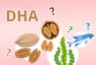 營養師教路: 拆解懷孕期揀DHA謬誤