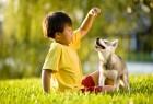 嬰兒與狗 求同存異(二)